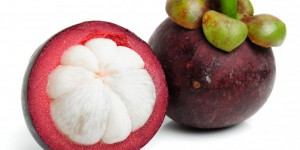 Garcinia Cambogia the real fat destructor