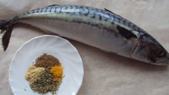 fish Iron