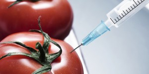 Chemicals in Food That Are Not Good For Your Health