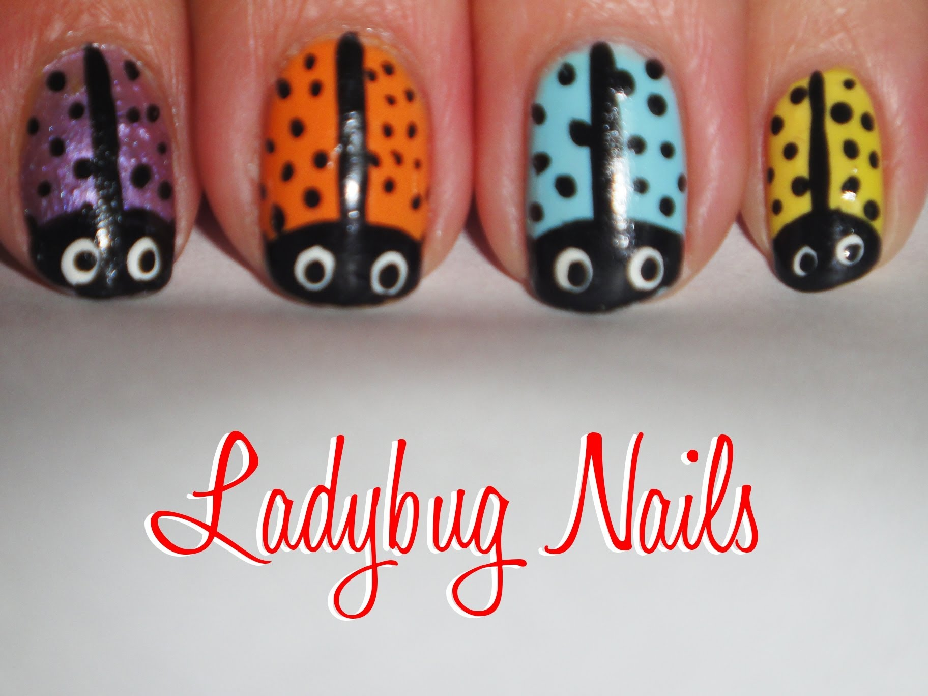 all coloured ladybugs
